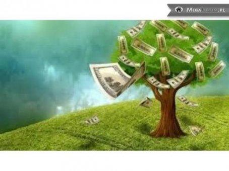 Zdjęcie do ogłoszenia Oferta Kredyt: rolnik, przemysl, nieruch