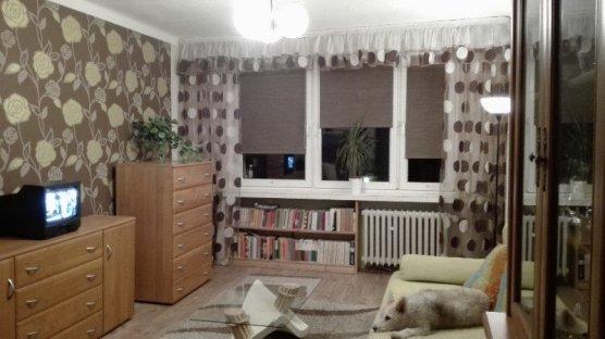 Zdjęcie do ogłoszenia Do wynajęcia pokój z kuchnia 40 m (Czyżyny)